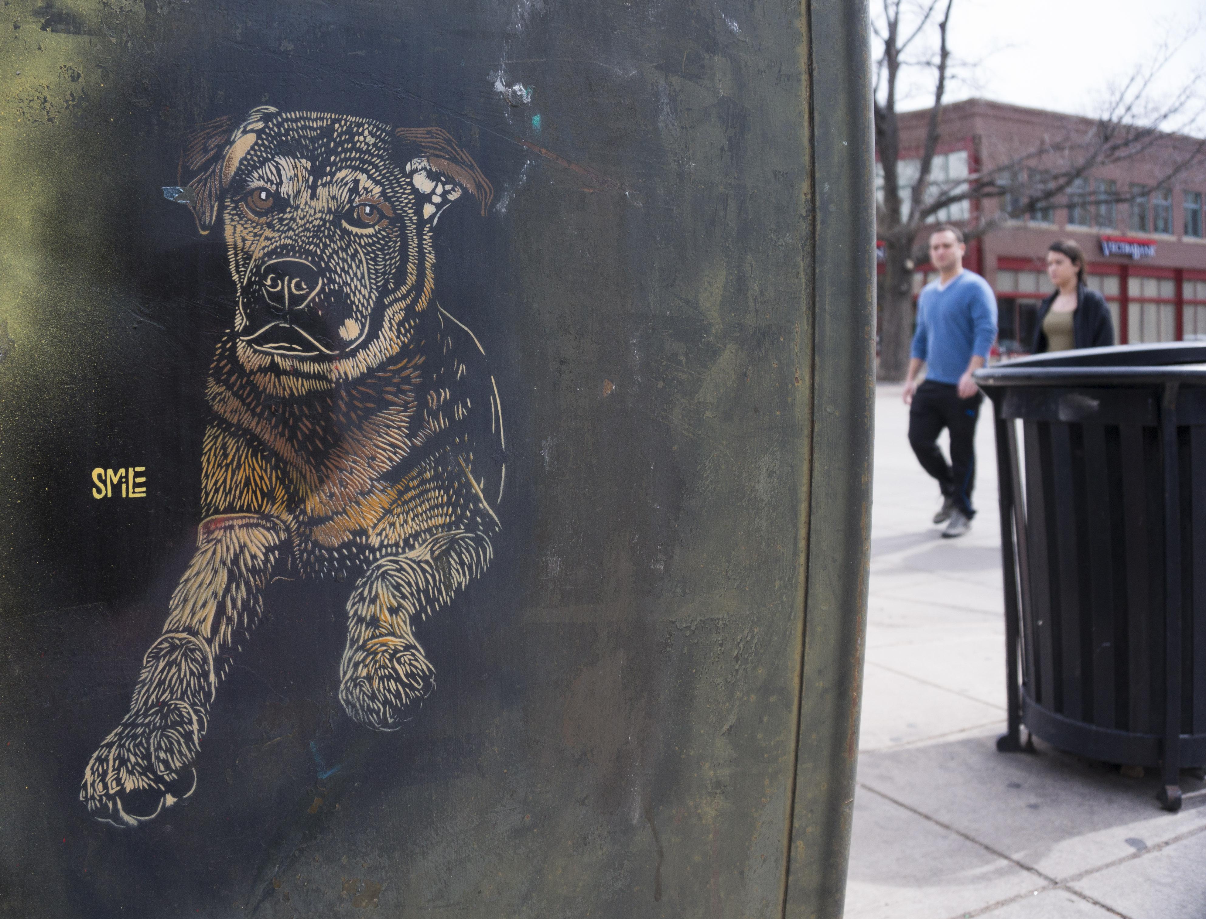 Photo: SMiLE artwork, Dog Image, Pearl Street