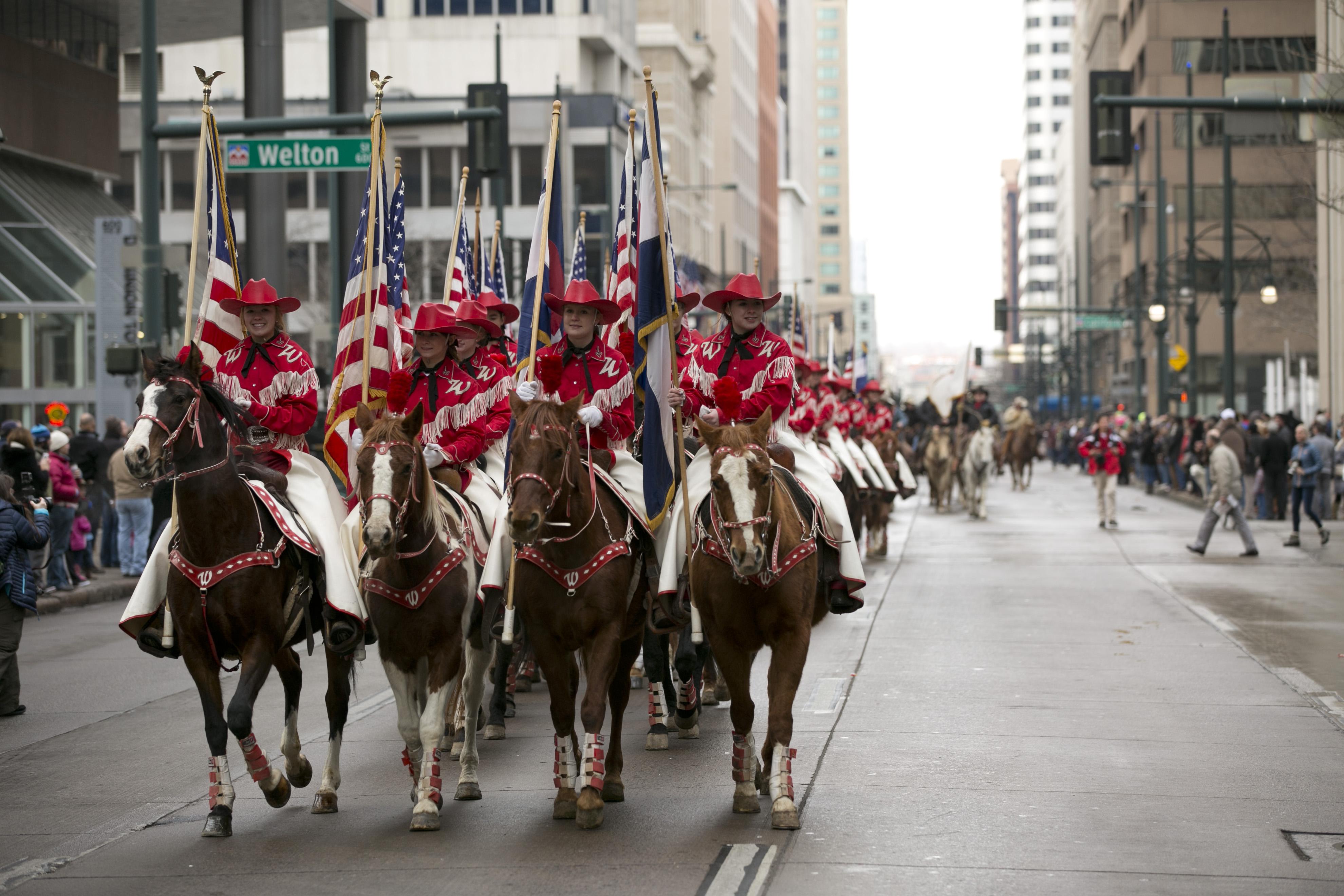 Photo: Stock show parade 8   Westernaires