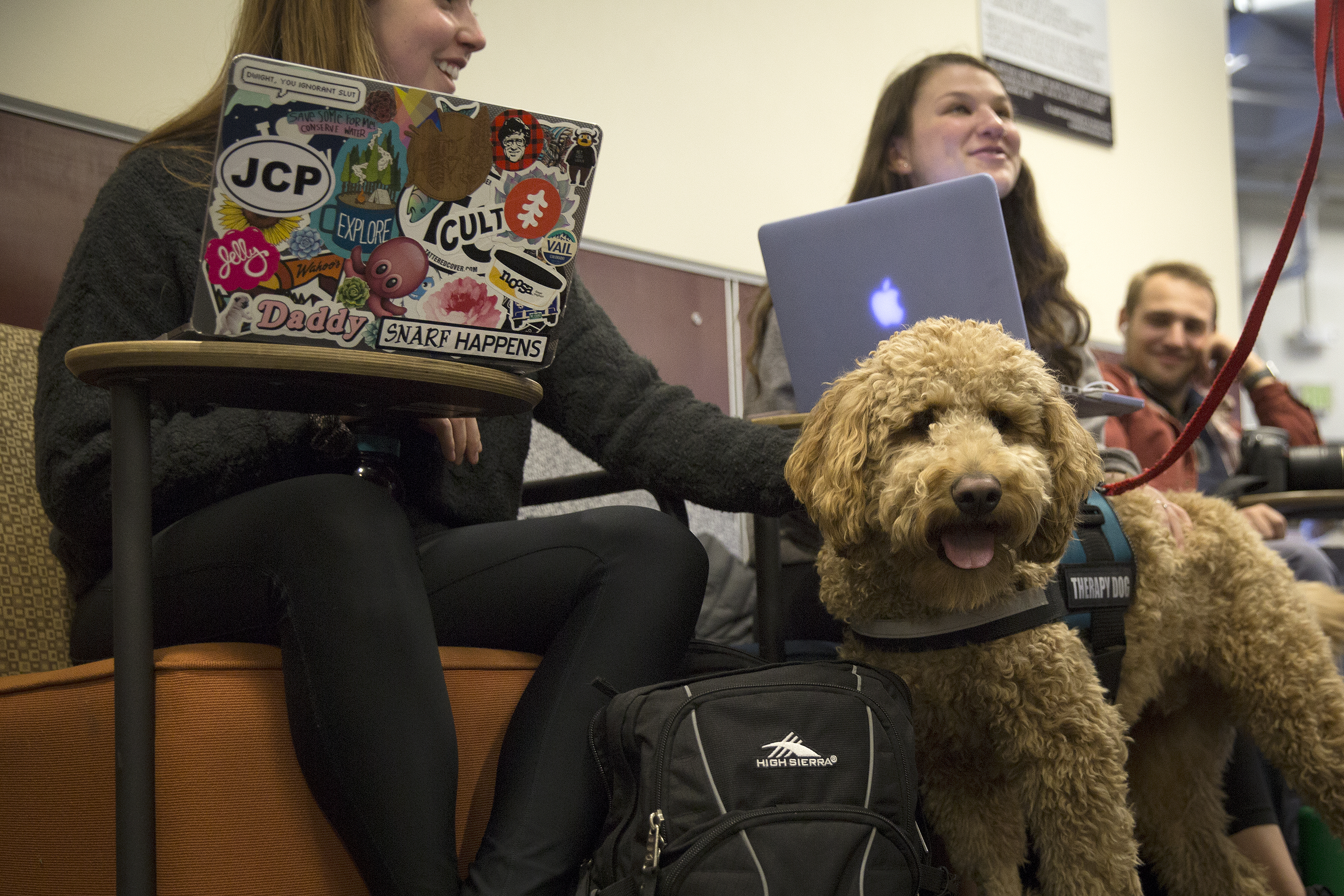 Photo: Therapy Dogs CU Boulder Norlin Library 3 20181211