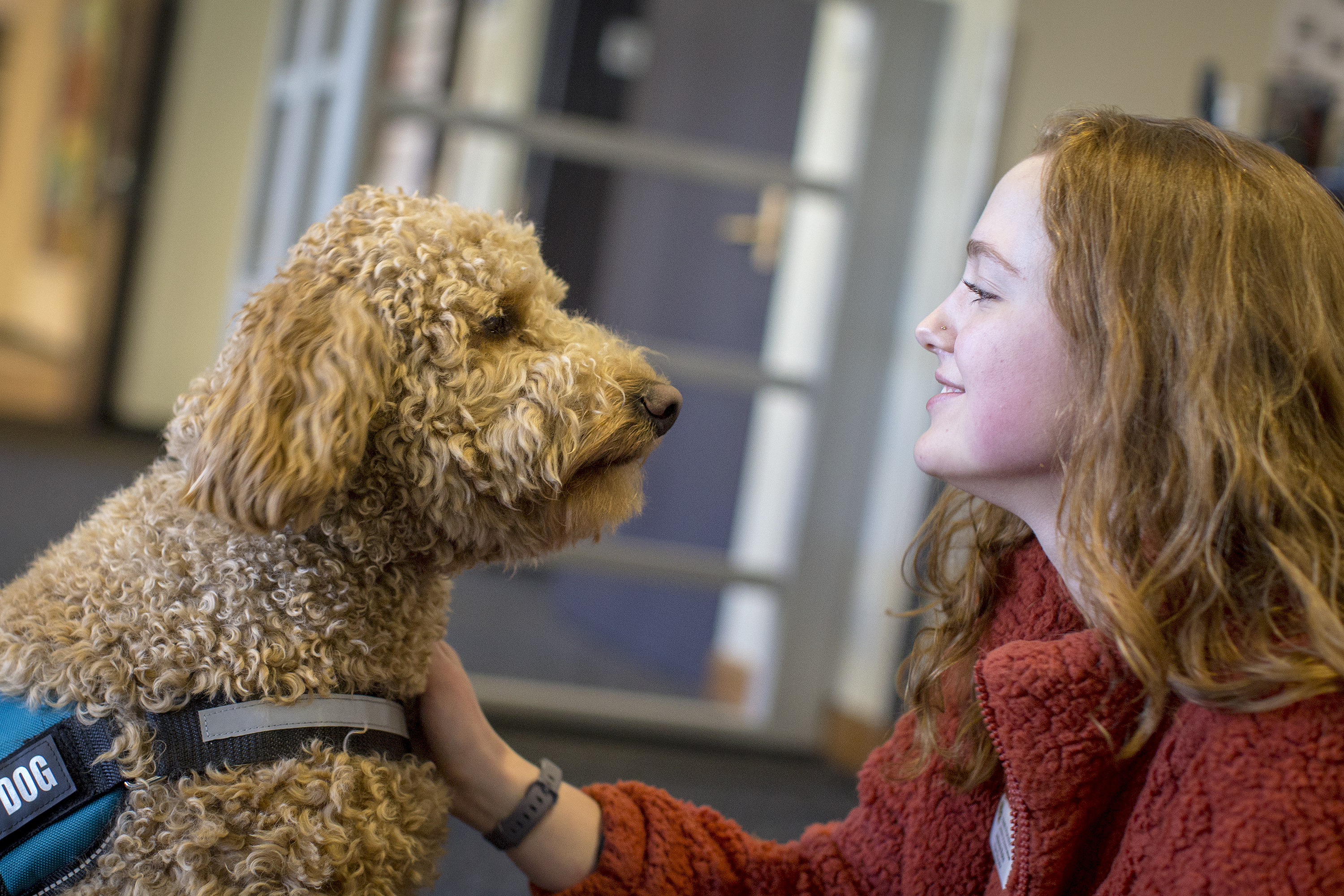 Photo: Therapy Dogs CU Boulder Norlin Library 8 20181211