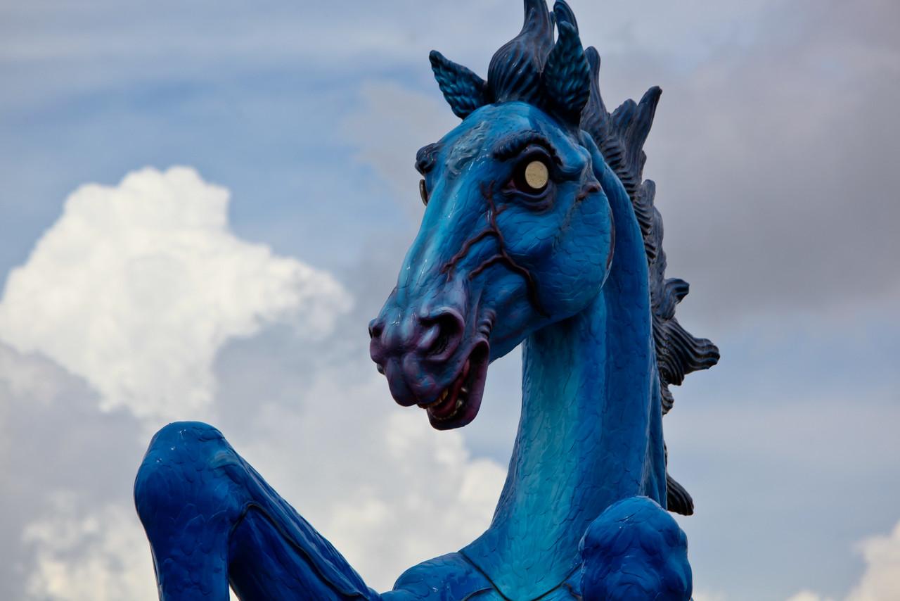 Photo: Mustang DIA