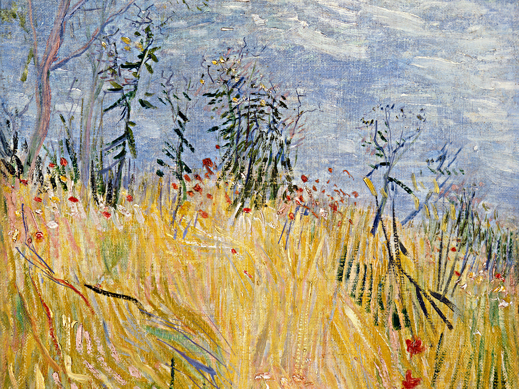 Photo: Vincent van Gogh, 'Edge of a Wheat Field with Poppies'
