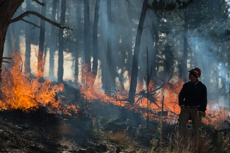 Photo: Prescribed burn wildfire Boulder Michael Kodas Megafire book