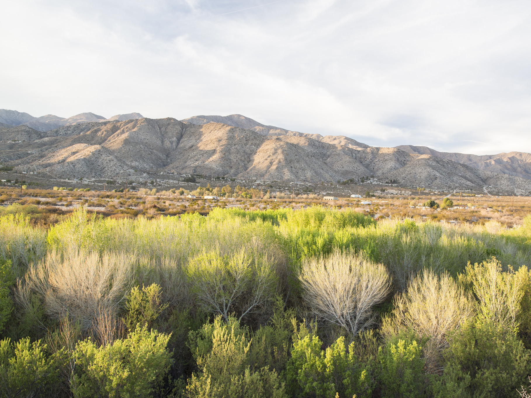 The Sand to Snow National Monument is one of three California areas designated as national monuments on Friday. Together they protect nearly 1.8 million acres of public lands.