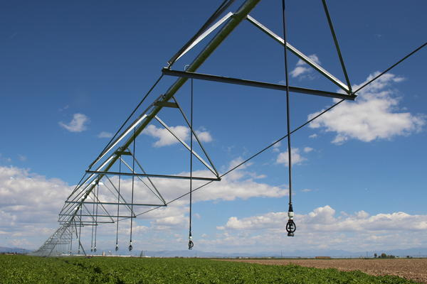 A center pivot sprinkler waters a potato field with groundwater in Colorado's San Luis Valley.