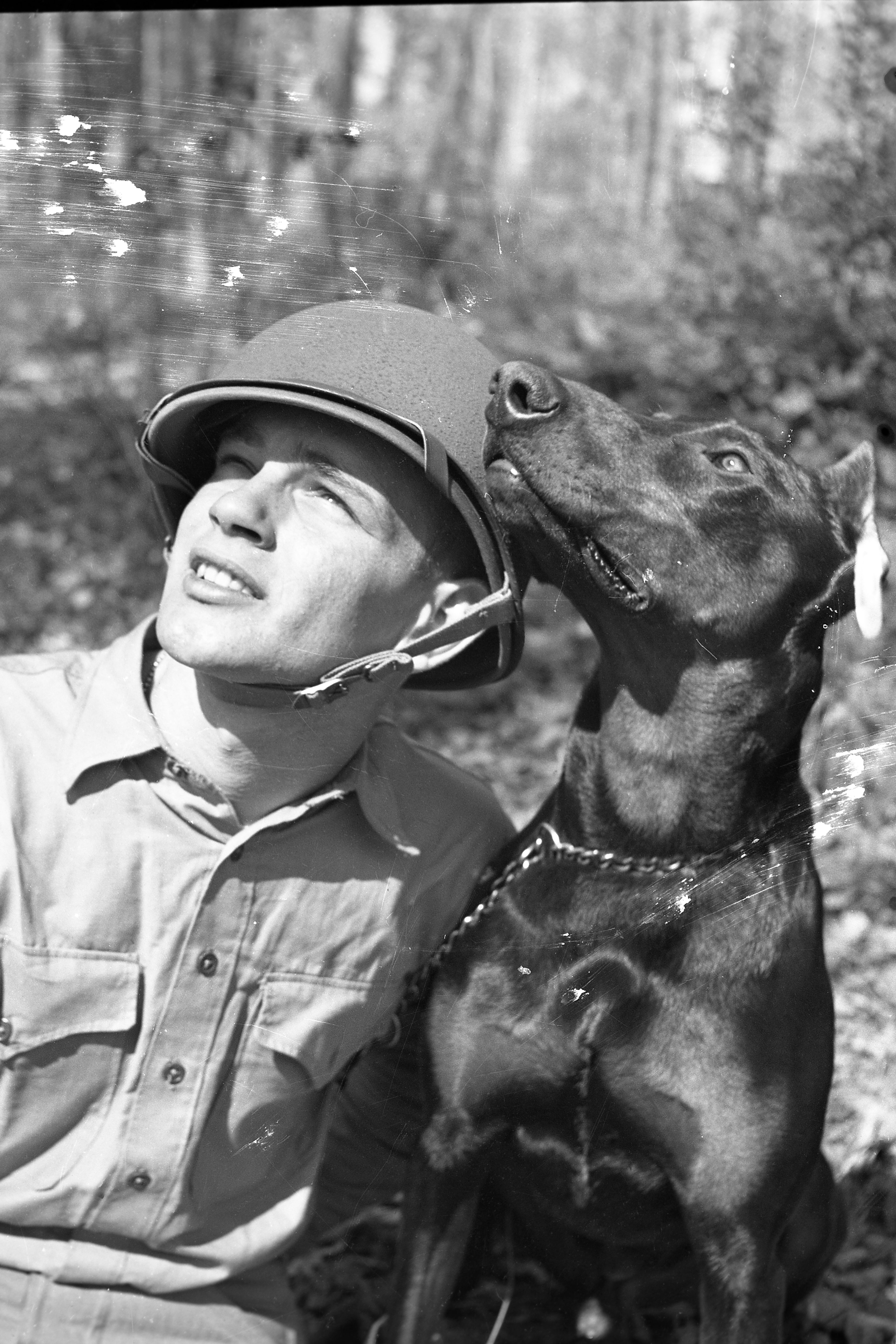 Homer Finley with a Doberman pinscher named Jan during a training session in North Carolina for a sniper in a tree scenario in March 1943.