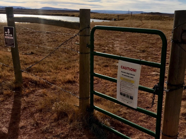 A sign warns visitors to Leazenby Lake, near Laramie, Wyoming, that its waters are contaminated by an algae bloom.