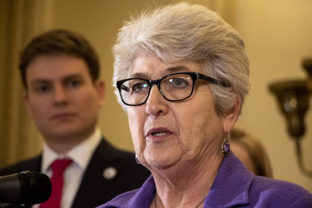"""State District 31 Sen. Lois Court speaks at a press conference for a """"red flag"""" bill that's being introduced in the state legislature, Feb. 14, 2019."""