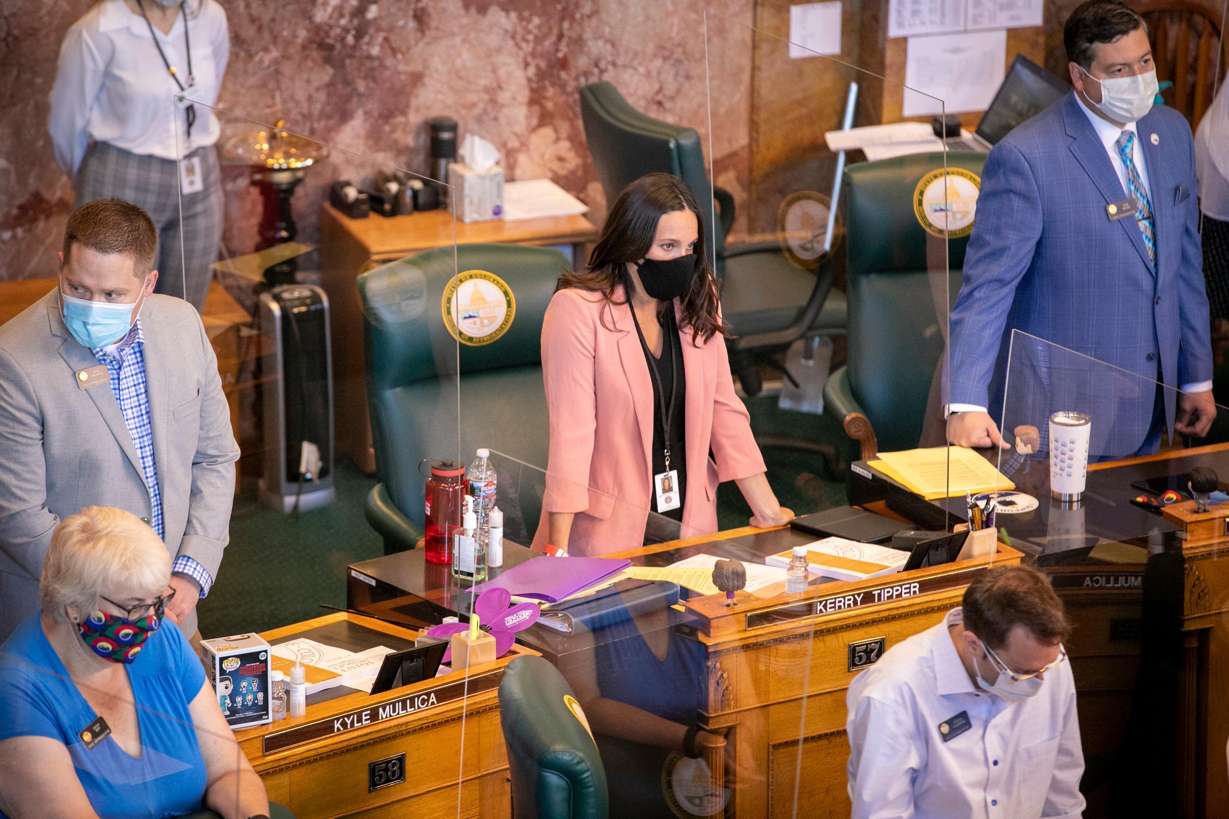 2020 Legislature Face Mask