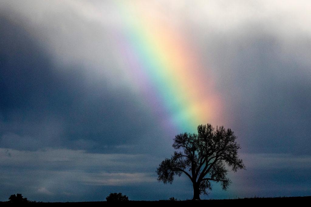Rainbow Near Loveland