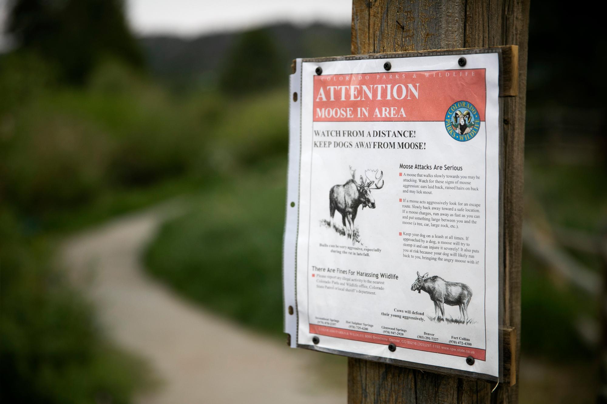 Wildlife Sign Nederalnd