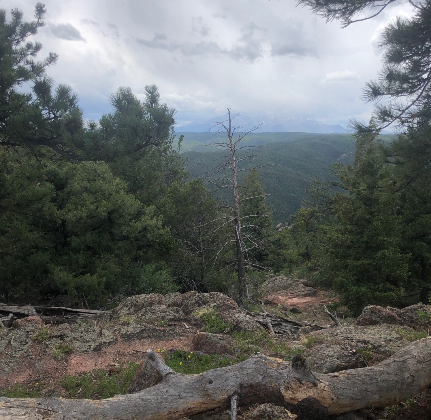 The Mt. Herman Hike is one place to check out for a challenging climb.