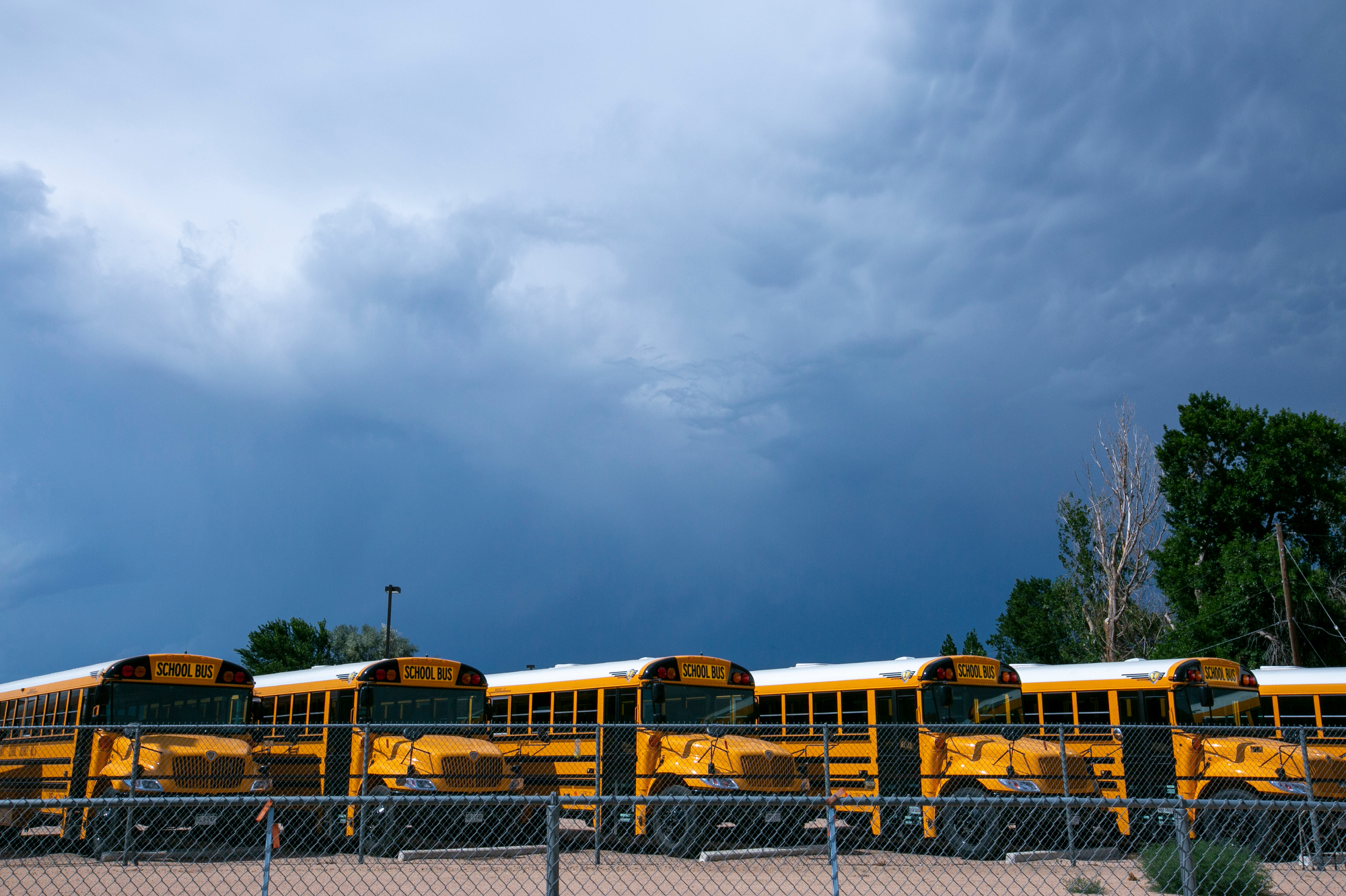 School buses in a parking lot in Greeley.