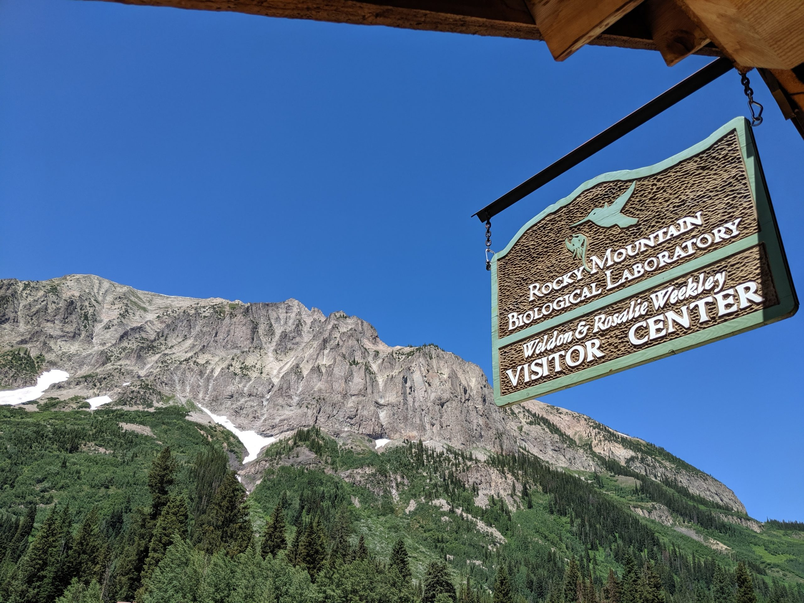 A sign for Rocky Mountain Biological Laboratory's visitor center in Gothic, Colo.