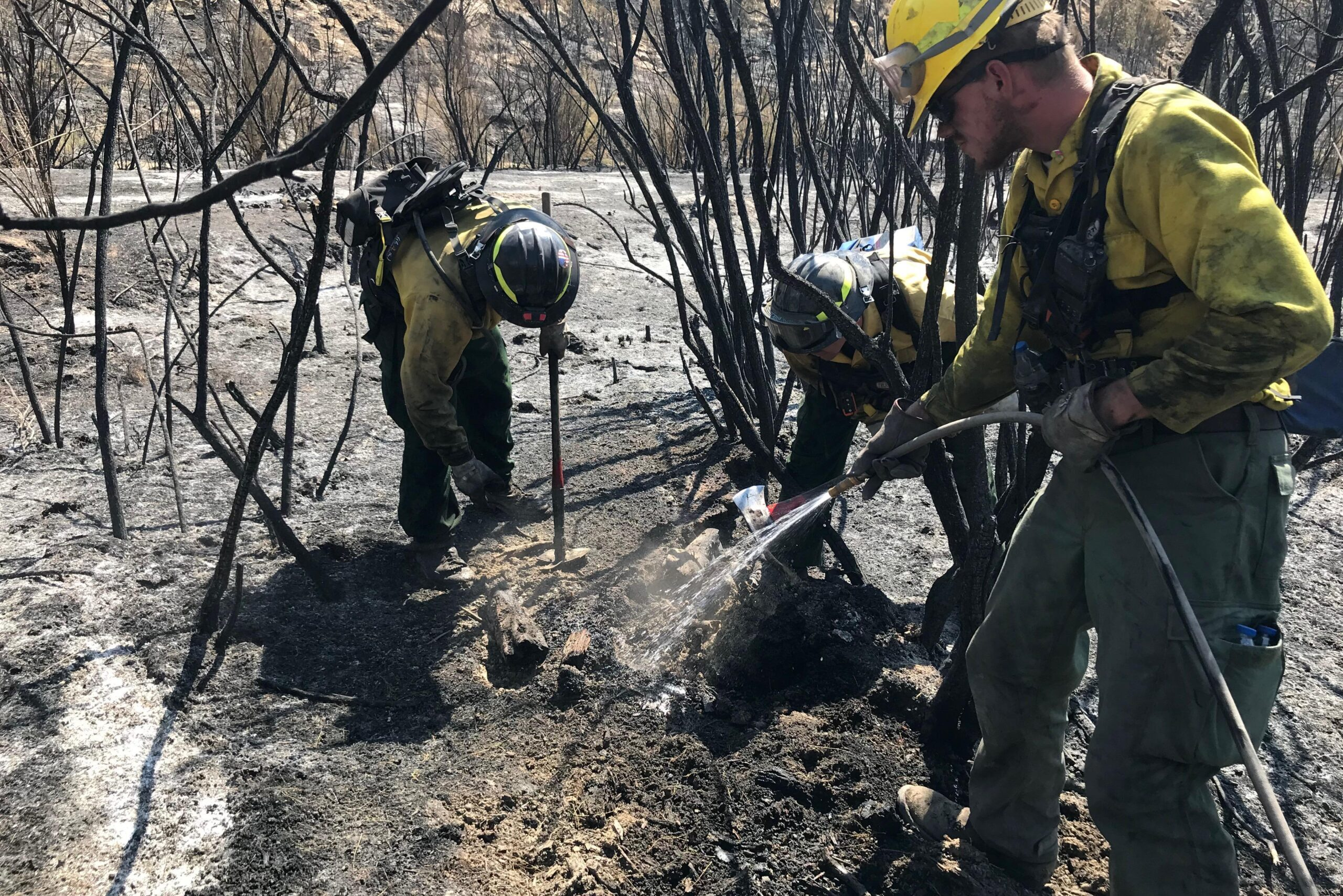 Wildland firefighters mopping up hot spots on the Pine Gulch fire, Aug. 26, 2020.