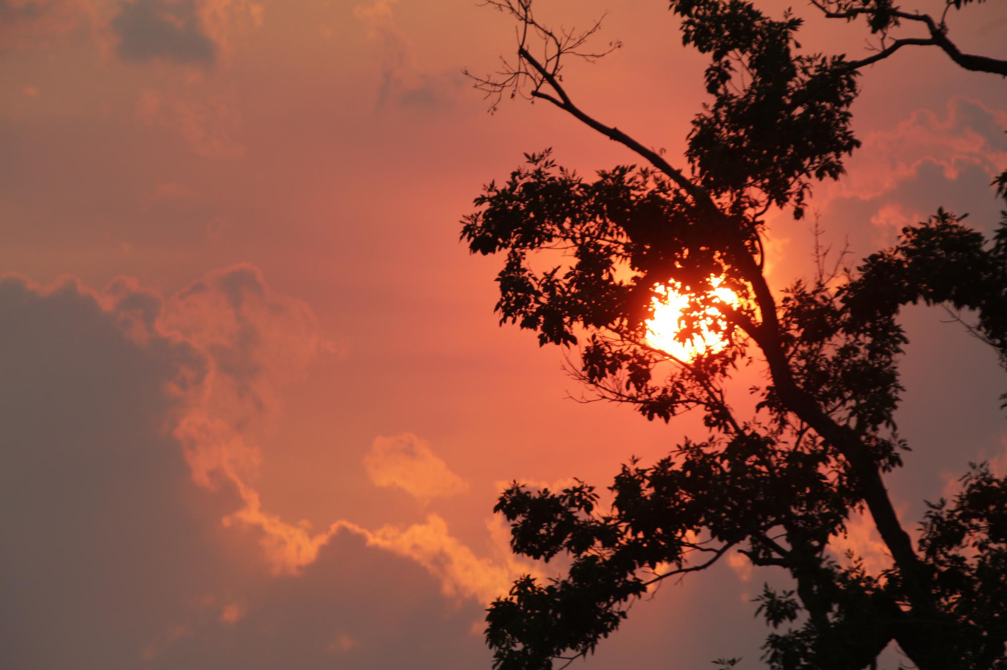 SUNSET WILDFIRE AIR QUALITY DENVER CITY PARK