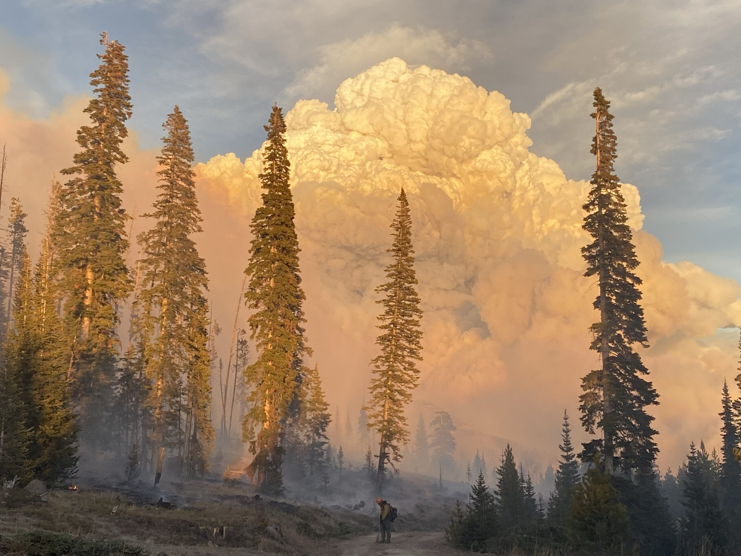 The Mill Creek Interagency Hotshot Crew tries to contain the East Troublesome fire on October 21, 2020.