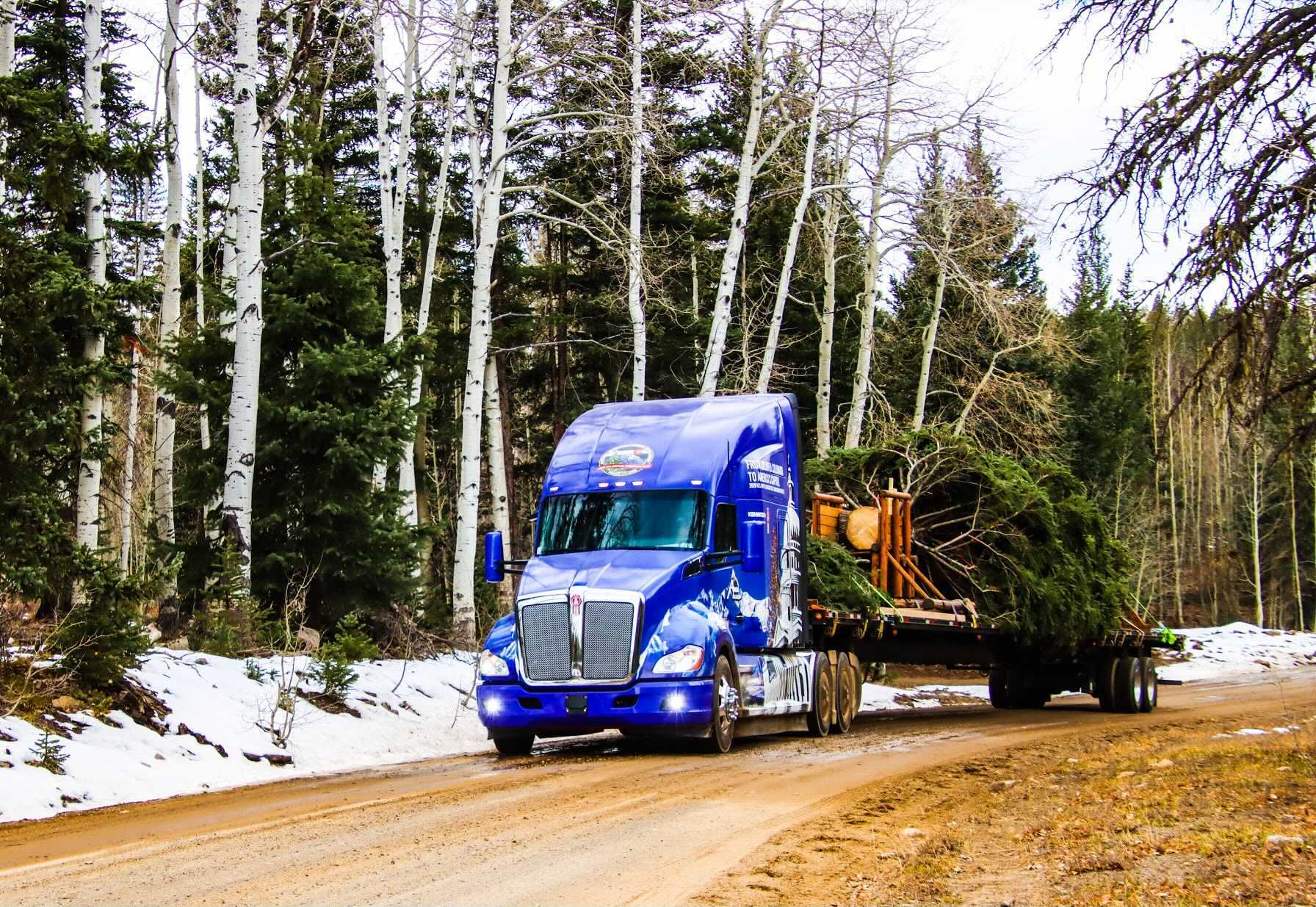 This year's Capitol Christmas Tree comes from outside of Montrose, in the Grand Mesa, Uncompahgre and Gunnison National Forests. It will travel through Colorado through Sunday before heading to Washington, D.C.